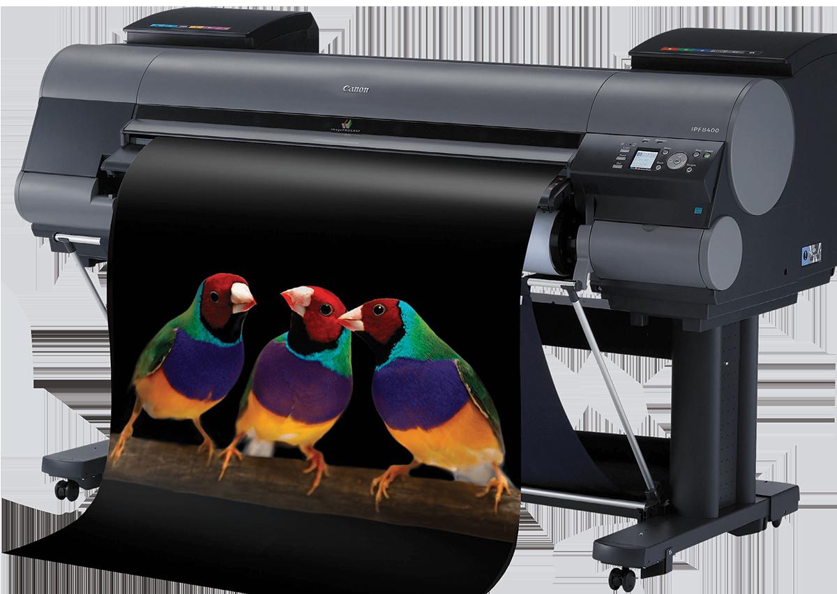 Plotter Canon Colore